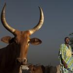 Mauritanian-refugees_Laurent-Geslin_24