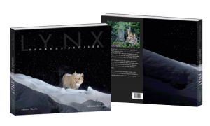 book-lynx-cover-3D