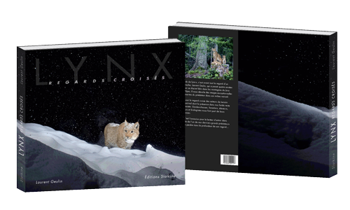 book-lynx-cover-3D