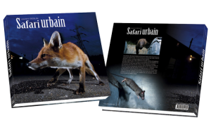 book-safari-urbain-cover-3D