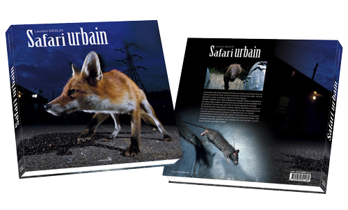book-safari-urbain-cover-3D