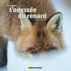 book-Odyssée du Renard