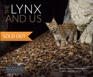 the-lynx-and-us_Laurent-Geslin-preview-soldout